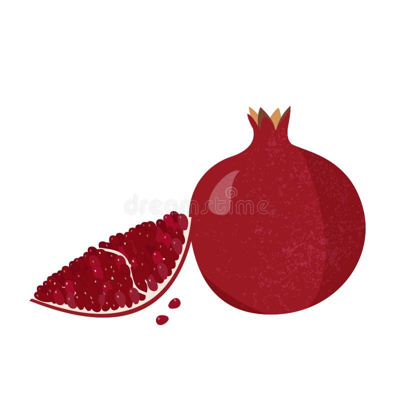 Neue Granatapfelillustration Ganze Frucht und Stück mit den Knochen vektor abbildung