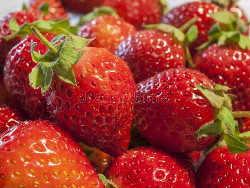 Neue Gruppe Erdbeerabschluß herauf Schuss stockfotos