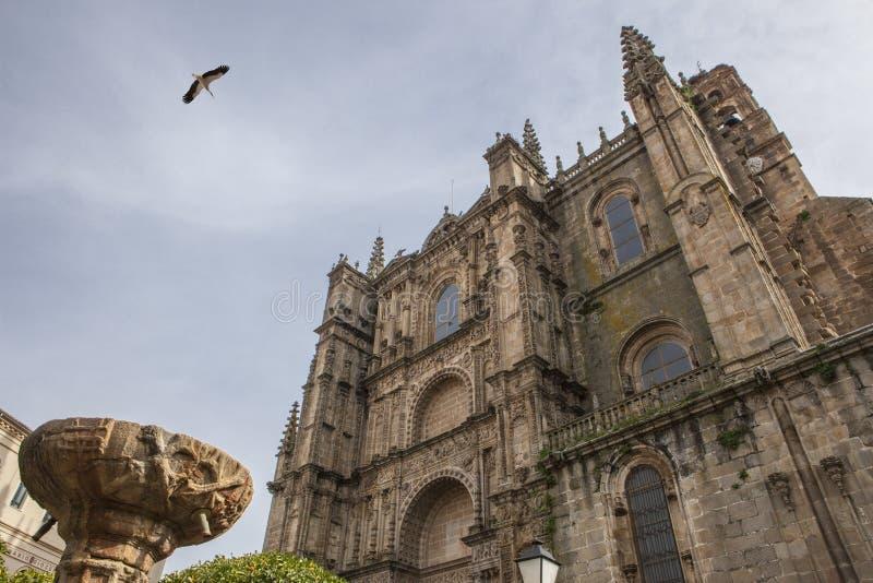 Neue Kathedrale Plasencia, Caceres stockfotos