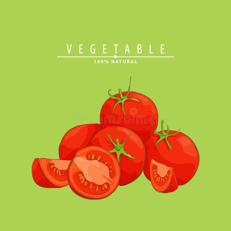 Neue reife Tomatenillustration vektor abbildung