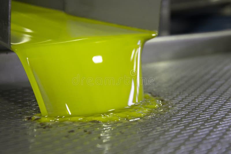 Neue reine Olivenölproduktion an einer Kaltpressefabrik nach dem olivgrünen Ernten lizenzfreie stockbilder
