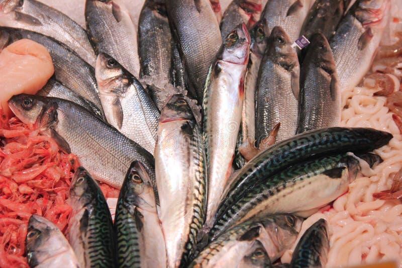 Neue rote Fisch- und Meeresfrüchteanordnung auf shopboard stockbilder