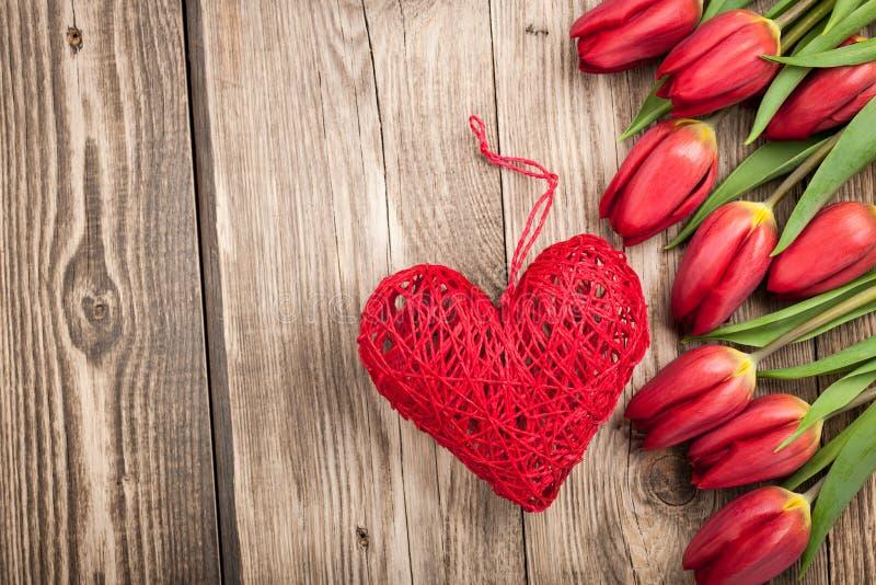 Neue rote Tulpen und Herz stockbilder