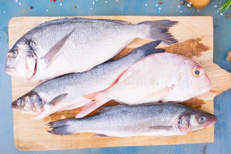 Neue Seefischvorbereitung stockbilder