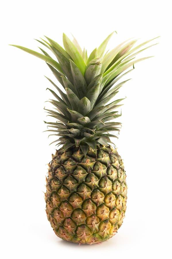 Neuer Ananasweißhintergrund lizenzfreie stockfotos