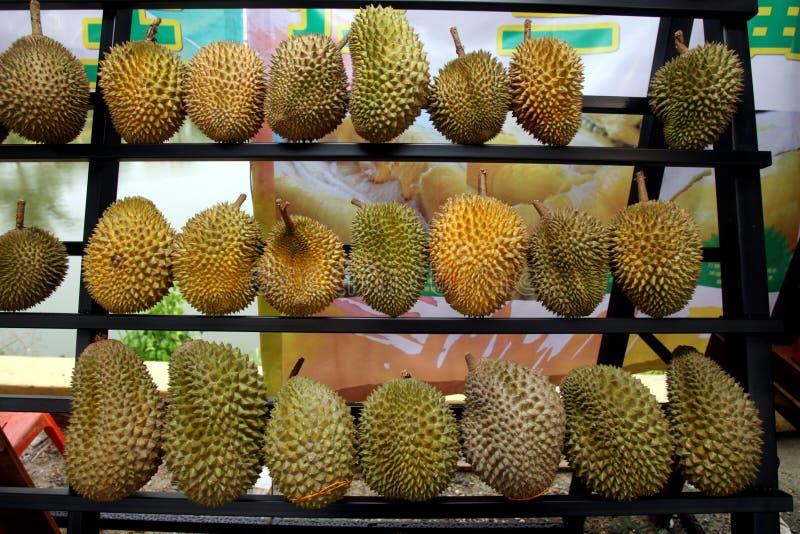 Neuer Durianstall lizenzfreie stockbilder