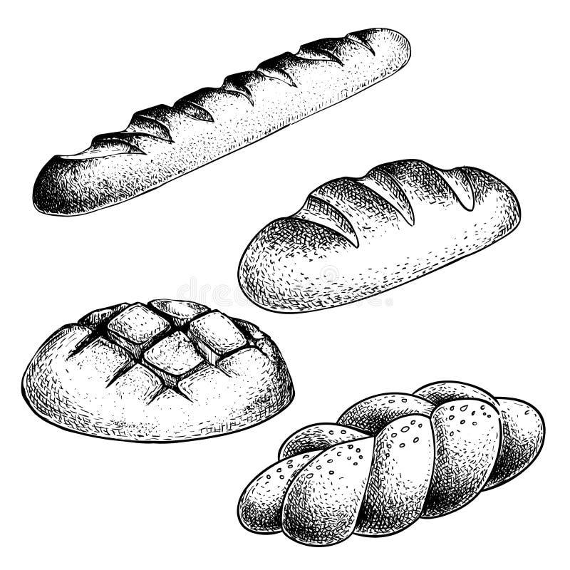 Neuer gebackener Brotsatz Französisches Stangenbrot, Laibbrötchen, Bortenbrötchen Handgezogene Skizzen-Artillustrationen für Bäck stock abbildung