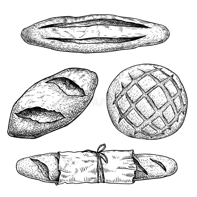Neuer gebackener Brotsatz Französisches Stangenbrot, Laibbrötchen, Brötchen mit Papierpaket Beschneidungspfad eingeschlossen Hand vektor abbildung