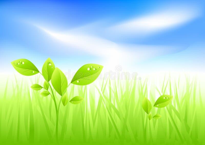 Neuer grüner Hintergrund lizenzfreie abbildung
