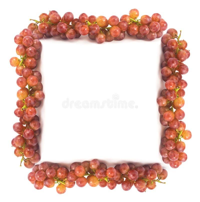 Neuer Rahmen Der Roten Trauben Mit Wassertropfen Stockbild - Bild ...