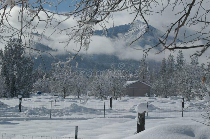 Neuer Schnee stockbilder