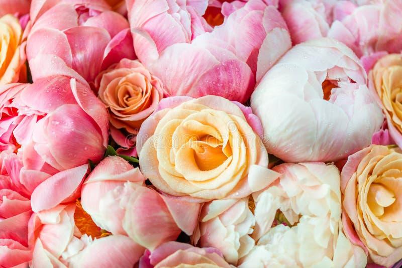 Neues Bündel rosa Pfingstrosen und Rosen lizenzfreie stockfotos