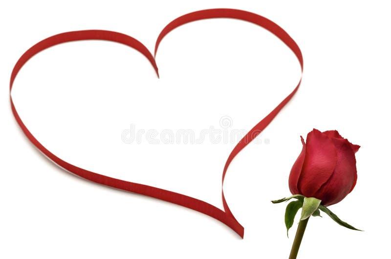 Neues einzelnes Blütenrot stieg mit dem unscharfen Foto des roten Bandes eingestellt als Liebesform stockbild
