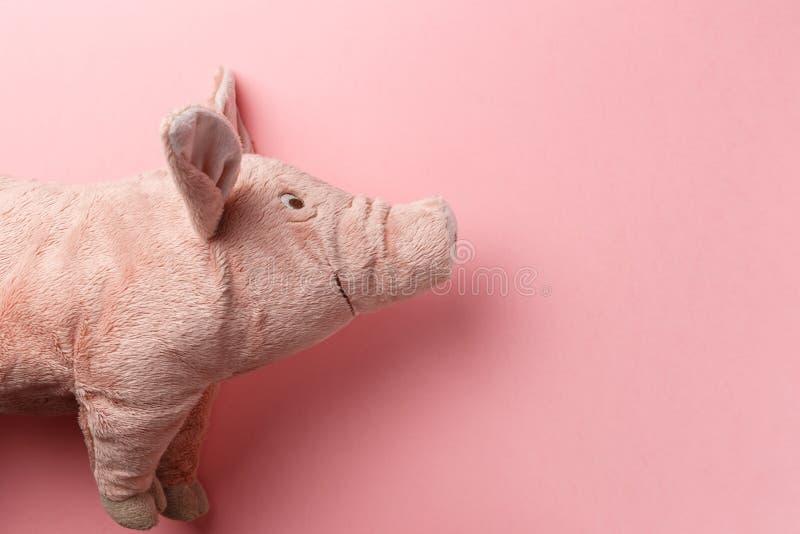 Neues Jahr des Schweins auf dem chinesischen Kalender stockbild