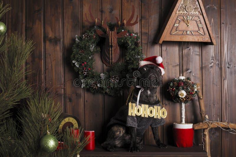 Neues Jahr `s Konzept Hund in Santa Claus-Hut mit einer Weihnachtsbeschriftung auf seinem Kasten stockfotos