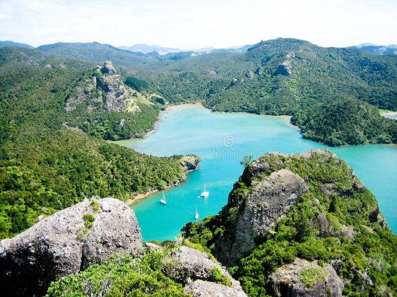 Neues Zeland Wasser lizenzfreies stockbild
