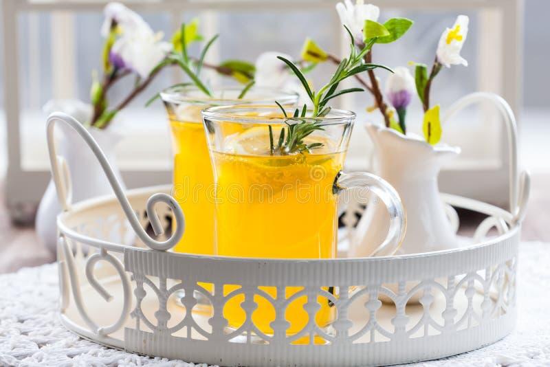 Neues Zitronengetränk mit Rosmarin stockfotografie