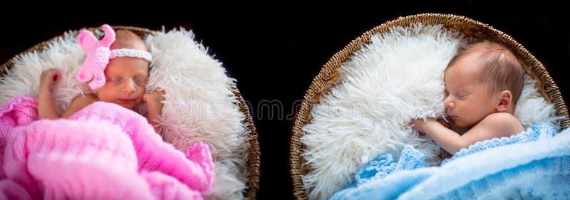 Neugeborene Zwillinge stockfoto