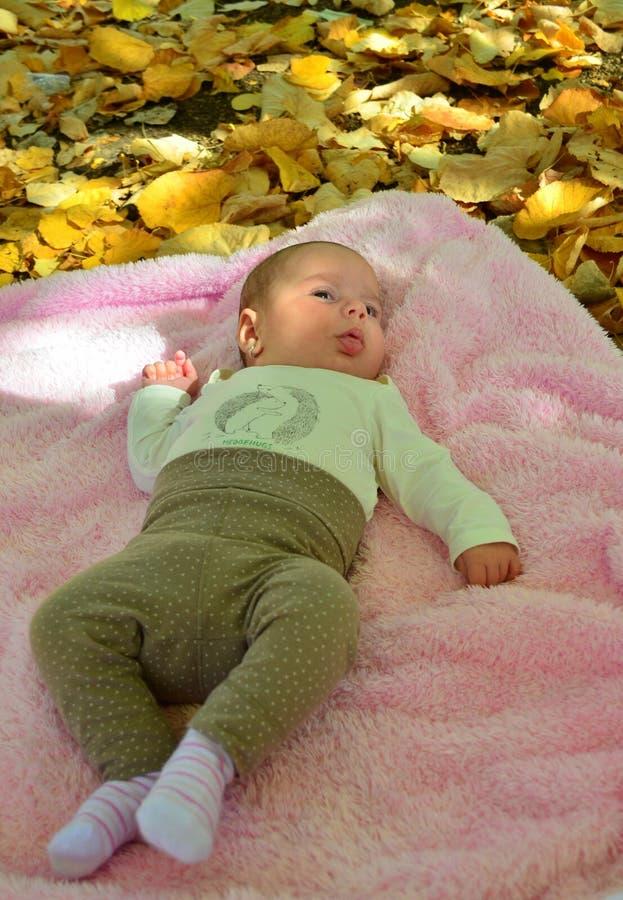 Neugeborenes Baby in Herbst photoshoot lizenzfreie stockfotografie