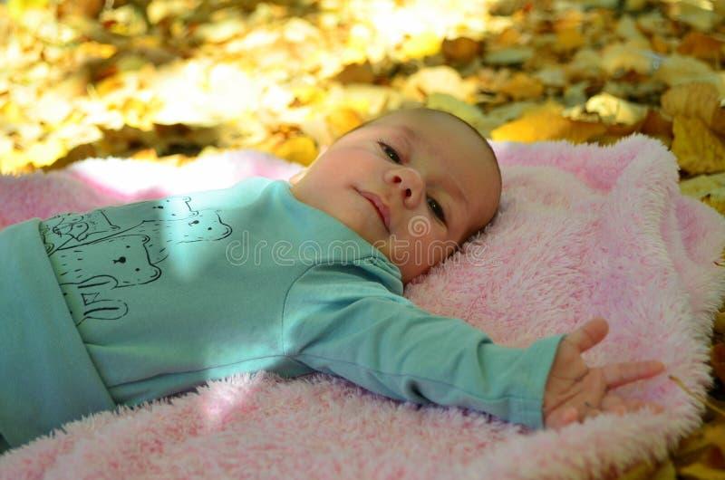 Neugeborenes Baby in Herbst photoshoot stockfotos