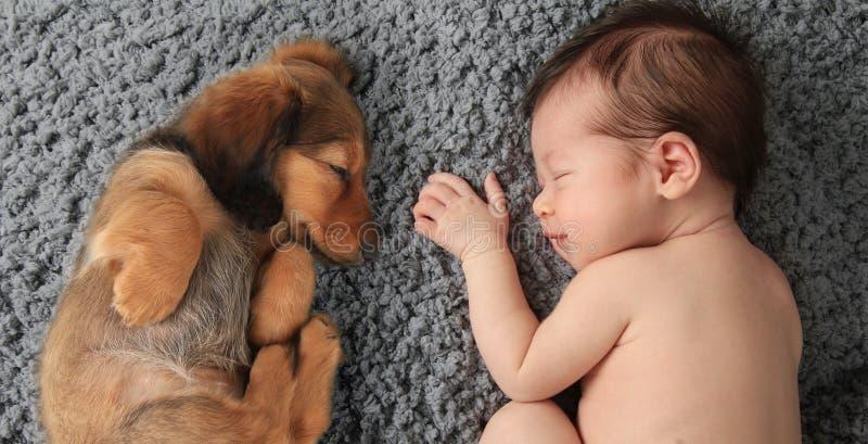 Neugeborenes Baby und Welpe lizenzfreie stockbilder