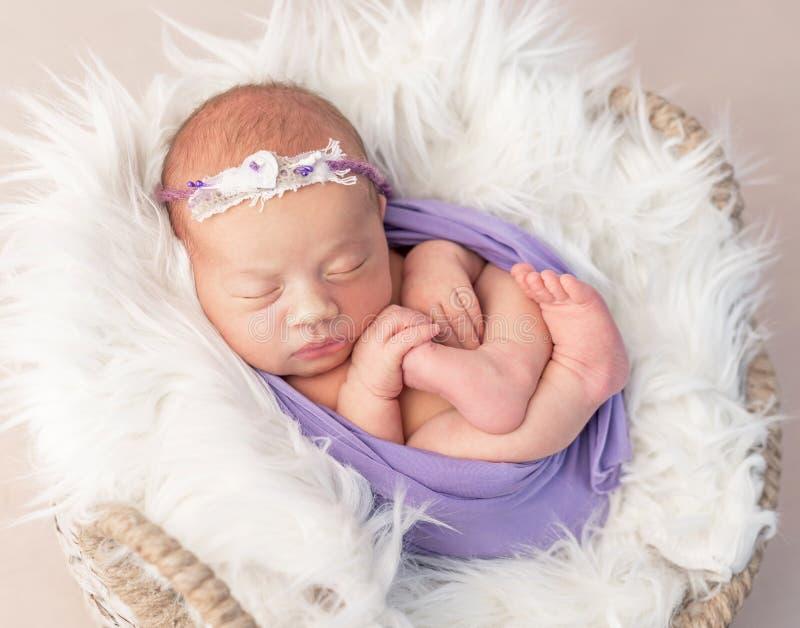 Neugeborenes Kind im Wolle-bedeckten Korb mit Spielzeug lizenzfreies stockbild