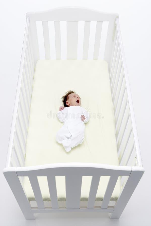 Neugeborenes Schätzchen im Feldbett lizenzfreie stockbilder