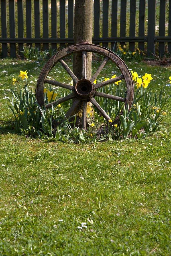 Neumático de madera imagen de archivo libre de regalías