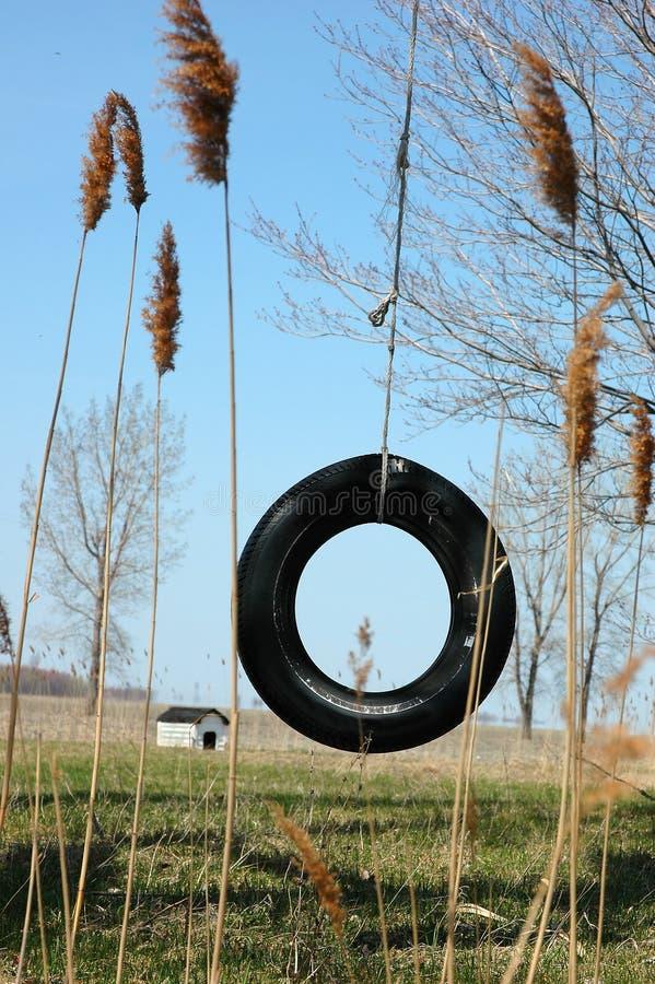 Neumático del oscilación fotografía de archivo