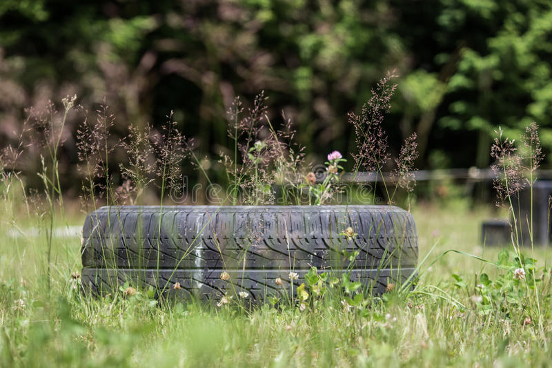 Neumático en campo imagen de archivo
