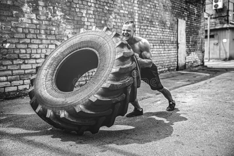 Neumático grande móvil del hombre descamisado muscular de la aptitud foto de archivo