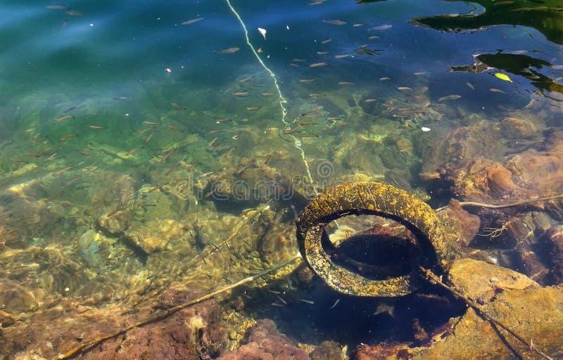 Neumático subacuático fotos de archivo