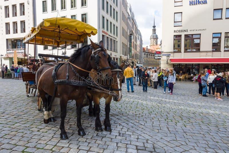 Neumarkt carré et tiré par le chariot de chevaux dans la vieille ville photographie stock