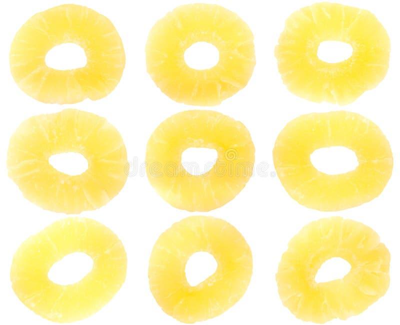 Neun getrocknete Ananas stockbild