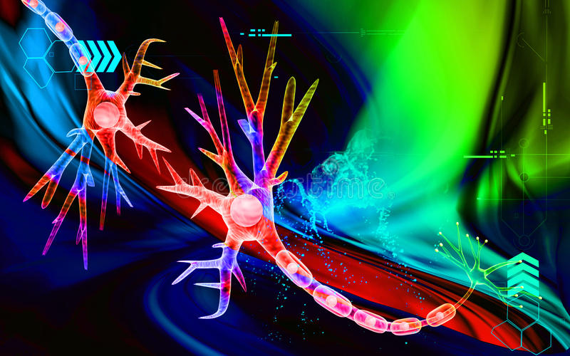 Neurônio ilustração royalty free