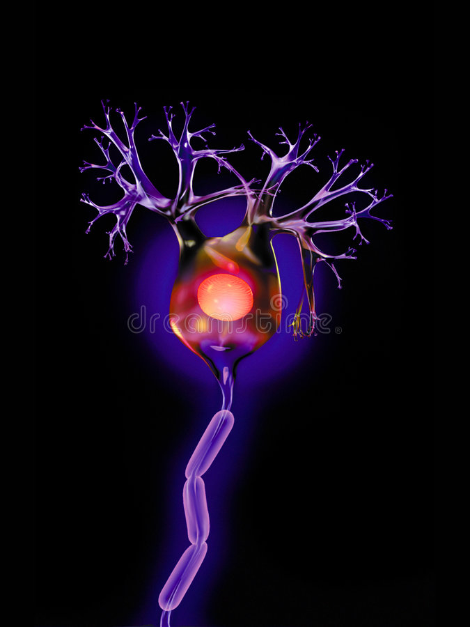 Neurônio no preto fotos de stock royalty free