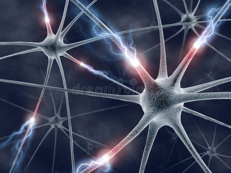 Neurônios ilustração do vetor