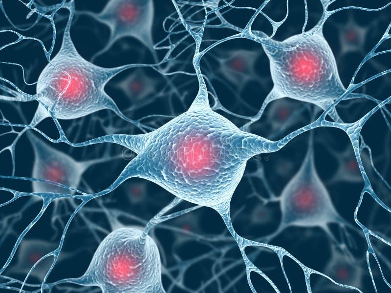 Neurônios e núcleo ilustração stock