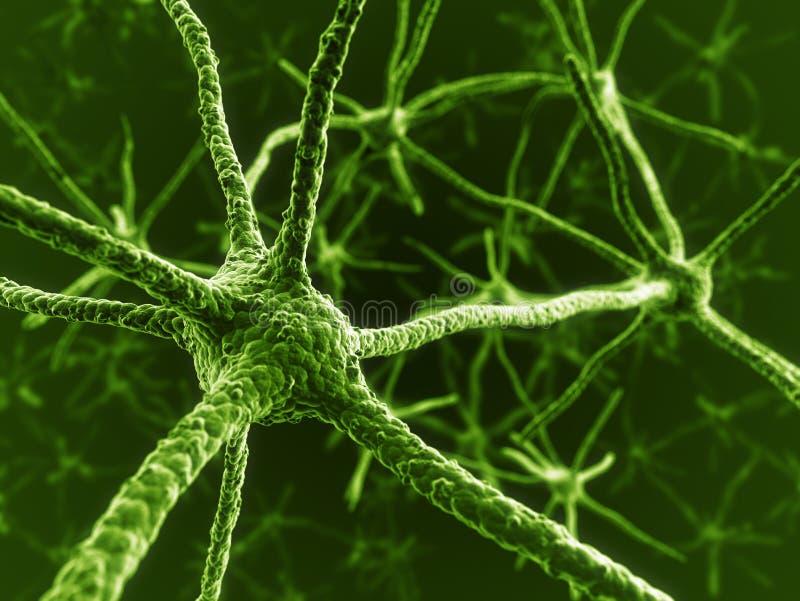 Neurônios no verde ilustração stock