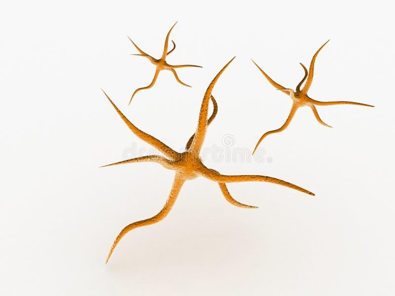 neurônio ilustração do vetor