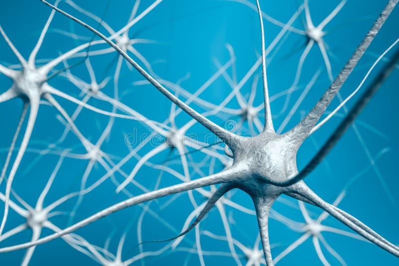 Neurônios no cérebro, ilustração 3D da rede neural ilustração royalty free
