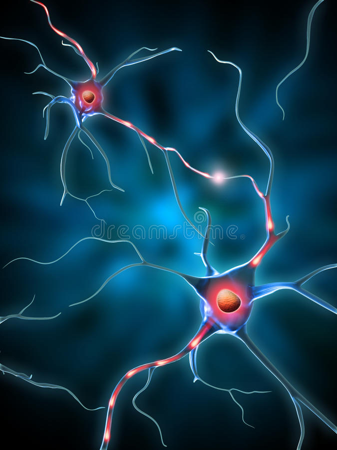Download Neural network stock illustration. Image of cell, micro - 11819917