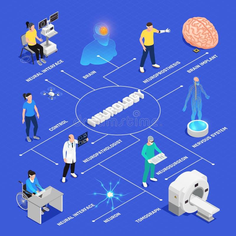 Neurologii Isometric Flowchart ilustracja wektor