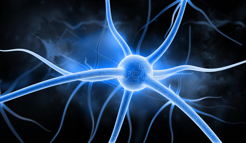 Download Neuron stock illustration. Image of nerve, synapse, medical - 22065913