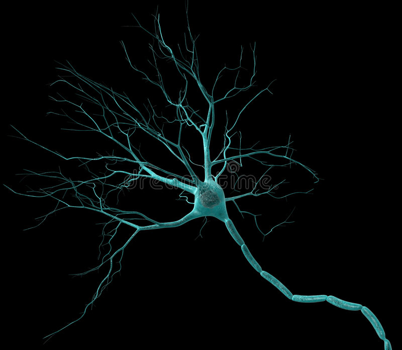 neuron royaltyfri illustrationer