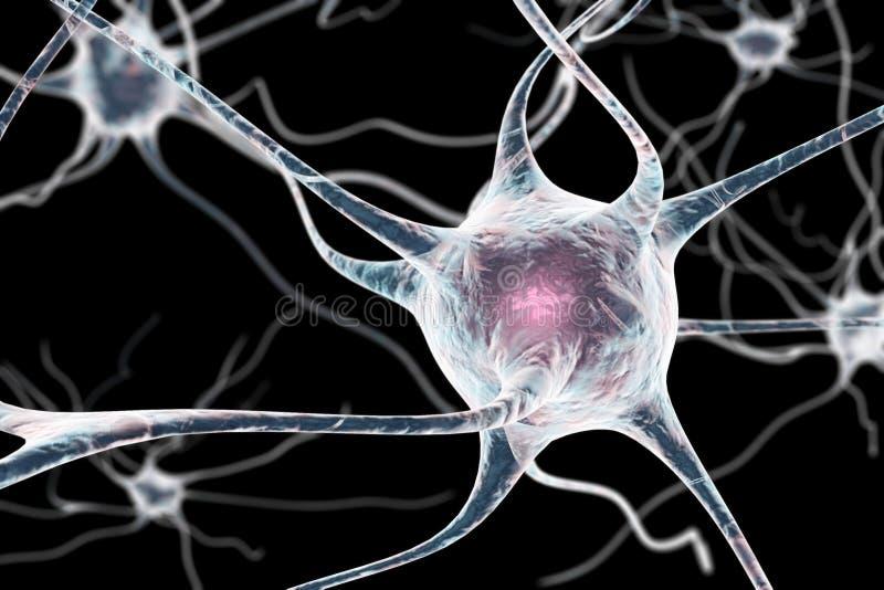 Neuron, komórka mózgowa royalty ilustracja