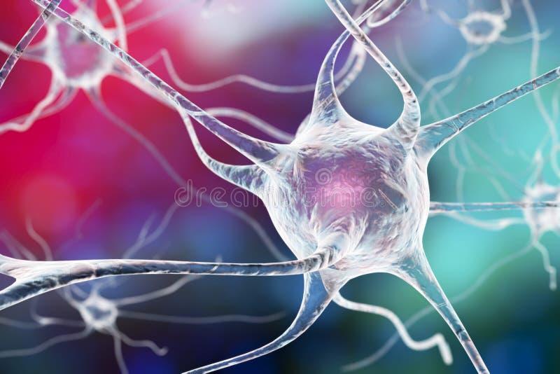 Neuron, komórka mózgowa ilustracji