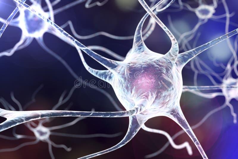 Neuron, komórka mózgowa ilustracja wektor