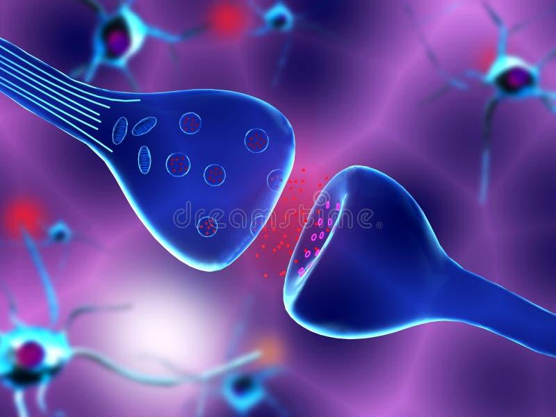 Neuronal synapse ilustracja wektor