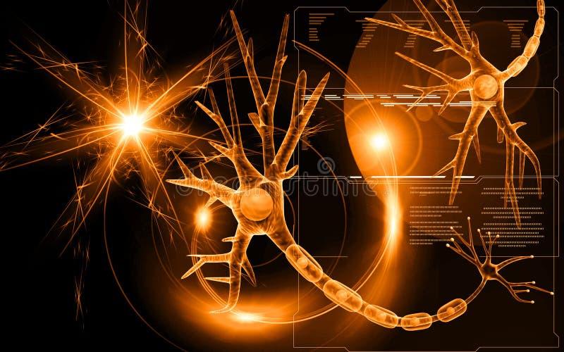 Neurone illustration libre de droits